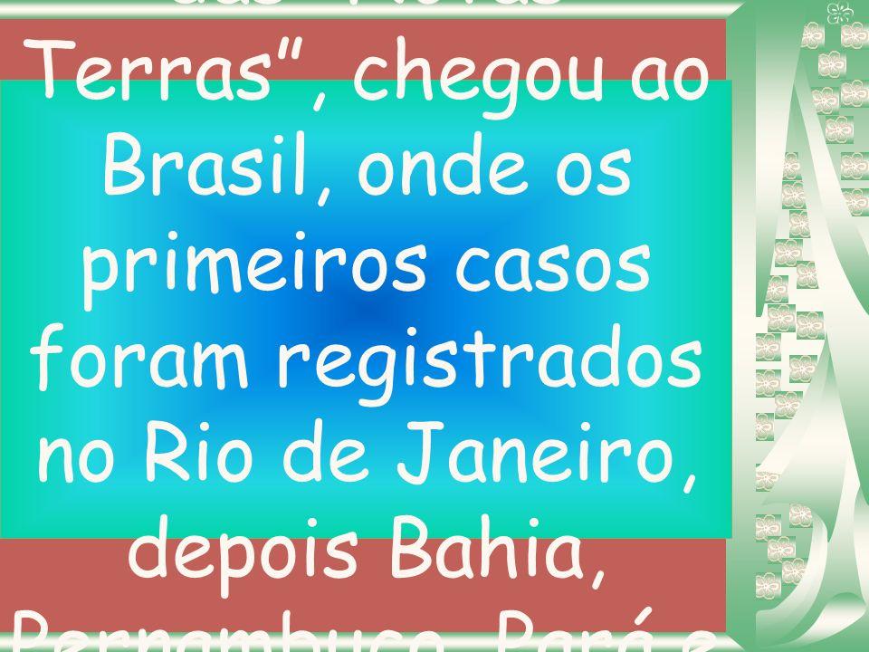 Com a descoberta das Novas Terras, chegou ao Brasil, onde os primeiros casos foram registrados no Rio de Janeiro, depois Bahia, Pernambuco, Pará e depois São Paulo.