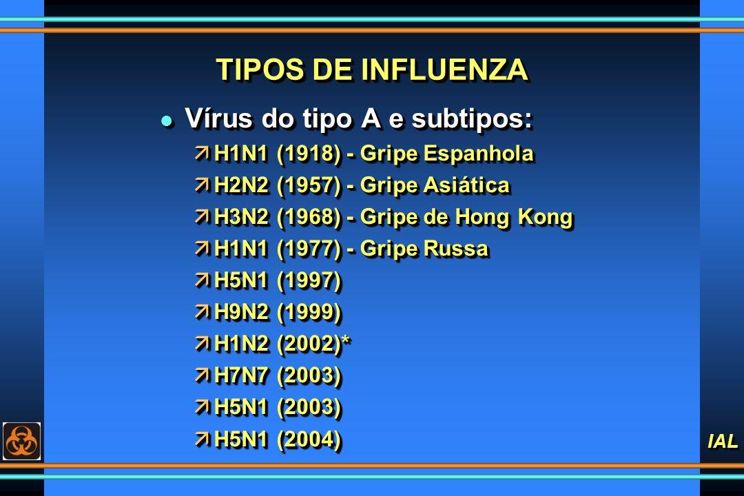 IAL TIPOS DE INFLUENZA l Vírus do tipo A e subtipos: äH1N1 (1918) - Gripe Espanhola äH2N2 (1957) - Gripe Asiática äH3N2 (1968) - Gripe de Hong Kong äH