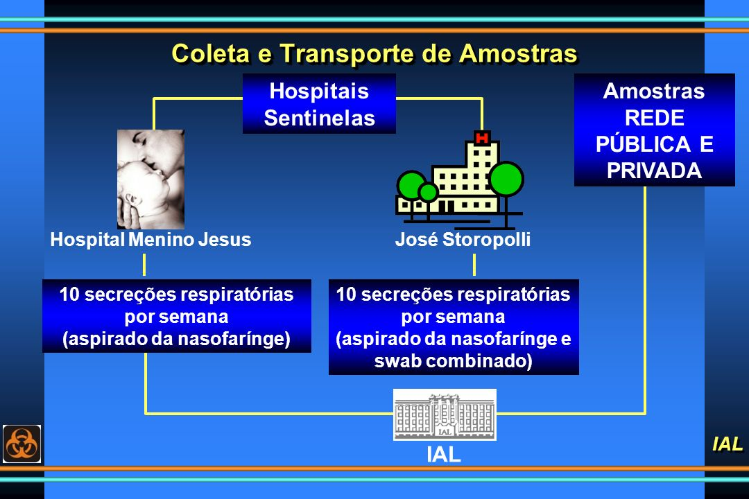IAL Coleta e Transporte de Amostras Hospital Menino JesusJosé Storopolli 10 secreções respiratórias por semana (aspirado da nasofarínge) 10 secreções