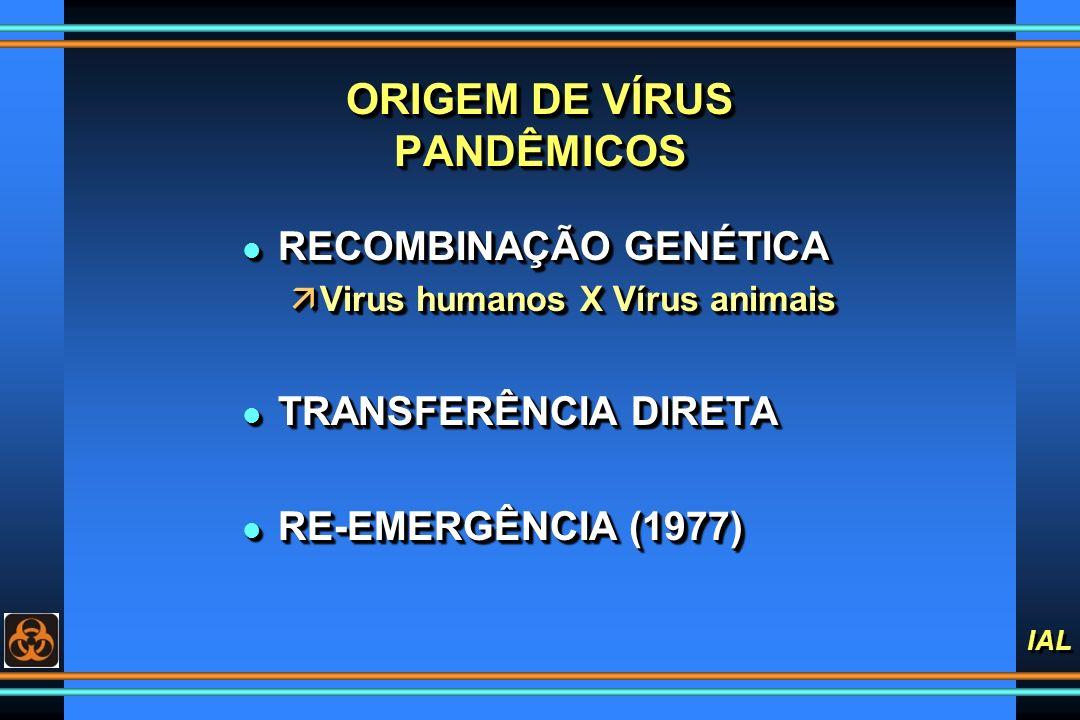 IAL ORIGEM DE VÍRUS PANDÊMICOS l RECOMBINAÇÃO GENÉTICA äVirus humanos X Vírus animais l TRANSFERÊNCIA DIRETA l RE-EMERGÊNCIA (1977) l RECOMBINAÇÃO GEN