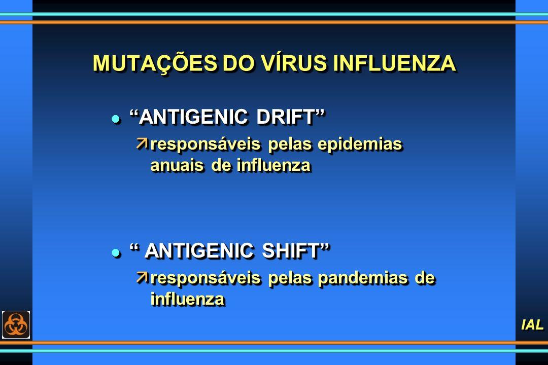 IAL MUTAÇÕES DO VÍRUS INFLUENZA l ANTIGENIC DRIFT äresponsáveis pelas epidemias anuais de influenza l ANTIGENIC SHIFT äresponsáveis pelas pandemias de