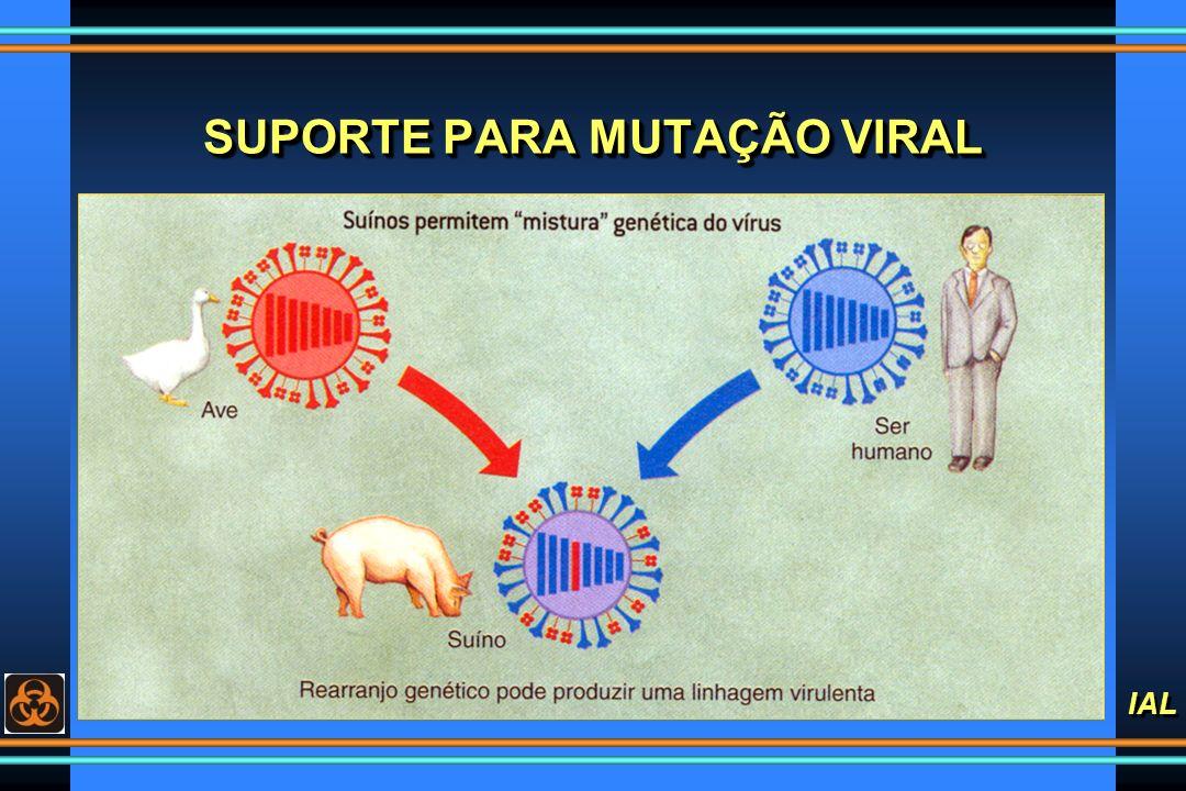 IAL SUPORTE PARA MUTAÇÃO VIRAL