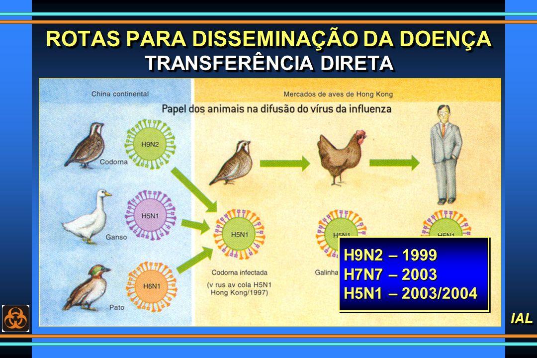 IAL ROTAS PARA DISSEMINAÇÃO DA DOENÇA TRANSFERÊNCIA DIRETA H9N2 – 1999 H7N7 – 2003 H5N1 – 2003/2004 H9N2 – 1999 H7N7 – 2003 H5N1 – 2003/2004