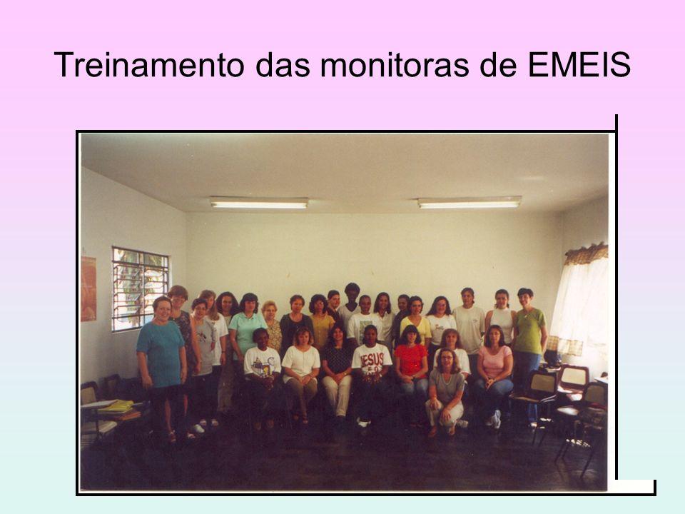 Treinamento das monitoras de EMEIS