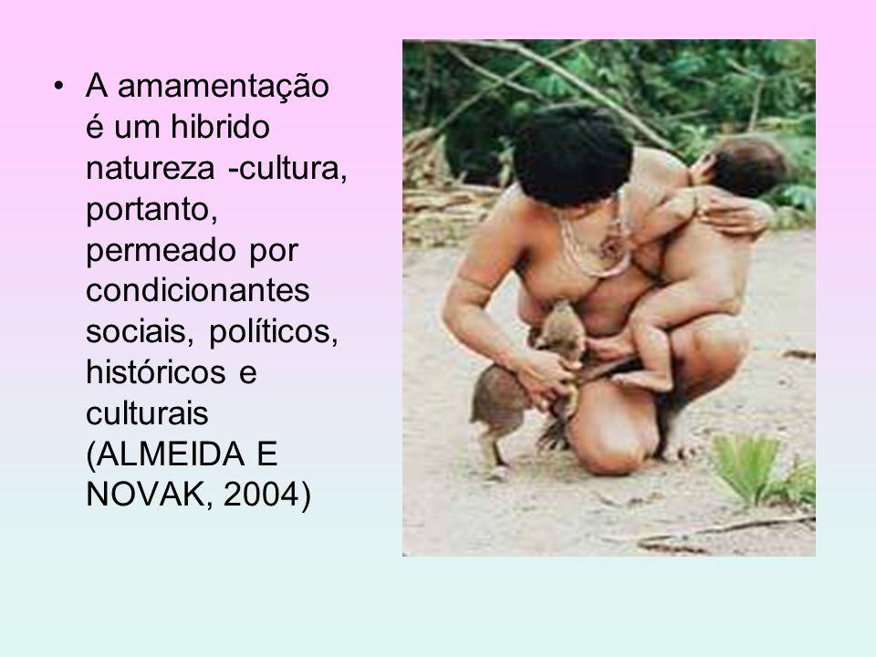 A amamentação é um hibrido natureza -cultura, portanto, permeado por condicionantes sociais, políticos, históricos e culturais (ALMEIDA E NOVAK, 2004)