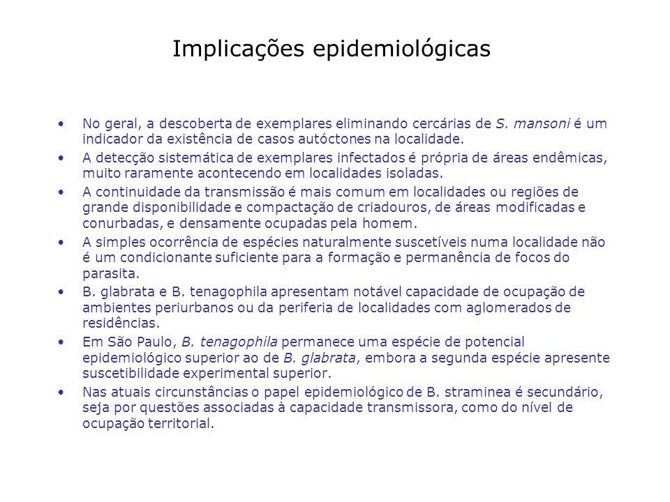 Implicações epidemiológicas No geral, a descoberta de exemplares eliminando cercárias de S. mansoni é um indicador da existência de casos autóctones n