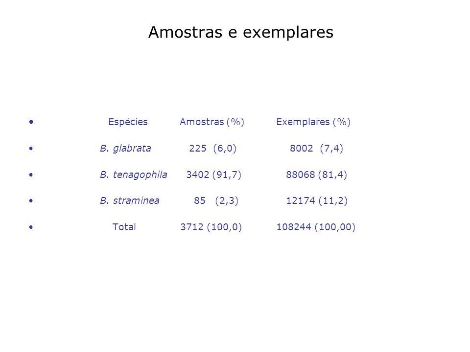 Amostras e exemplares Espécies Amostras (%) Exemplares (%) B. glabrata 225 (6,0) 8002 (7,4) B. tenagophila 3402 (91,7) 88068 (81,4) B. straminea 85 (2