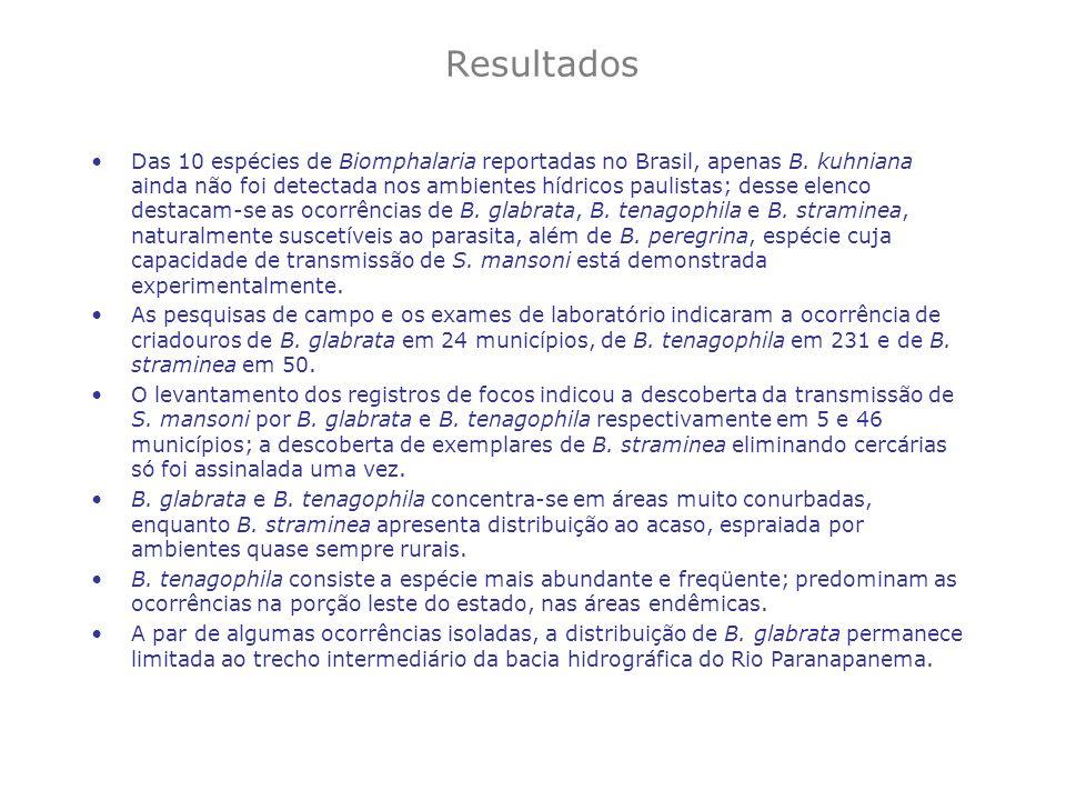 Resultados Das 10 espécies de Biomphalaria reportadas no Brasil, apenas B. kuhniana ainda não foi detectada nos ambientes hídricos paulistas; desse el