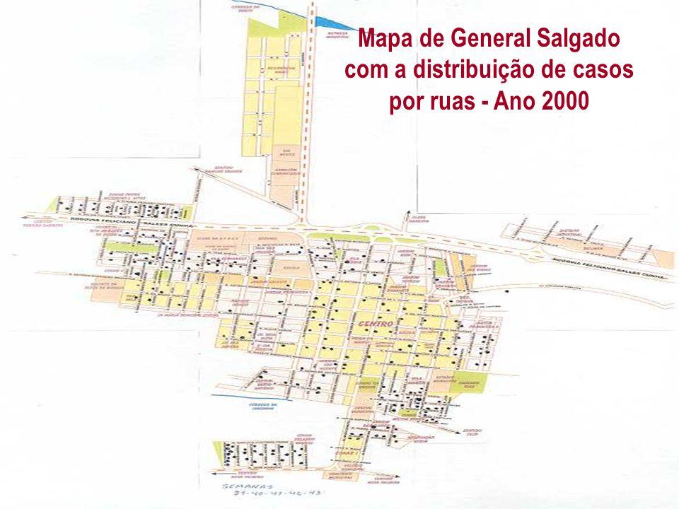 Mapa de General Salgado com a distribuição de casos por ruas - Ano 2000