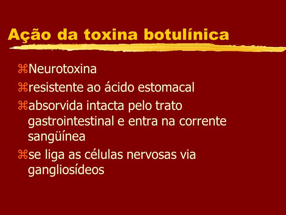 Ação da toxina botulínica zNeurotoxina zresistente ao ácido estomacal zabsorvida intacta pelo trato gastrointestinal e entra na corrente sangüínea zse