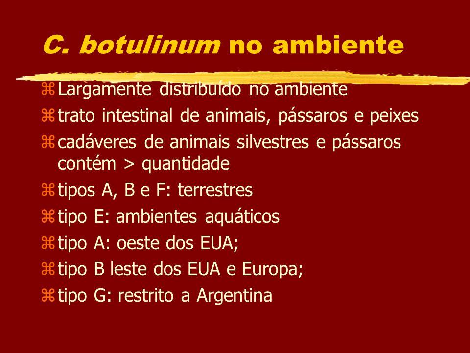 C. botulinum no ambiente zLargamente distribuído no ambiente ztrato intestinal de animais, pássaros e peixes zcadáveres de animais silvestres e pássar