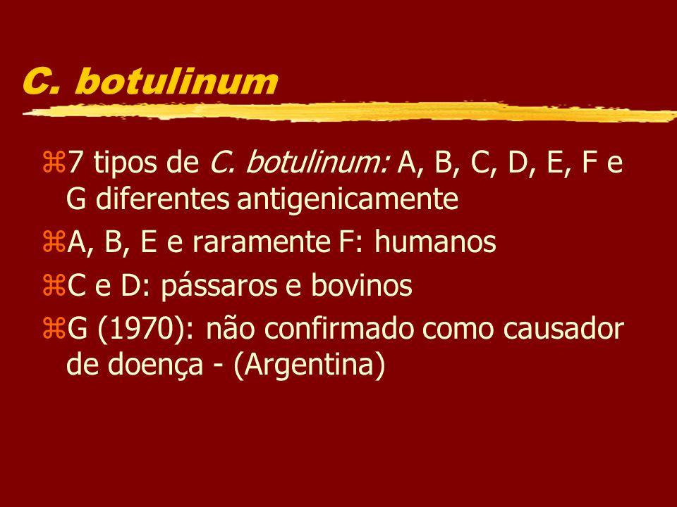 C. botulinum z7 tipos de C. botulinum: A, B, C, D, E, F e G diferentes antigenicamente zA, B, E e raramente F: humanos zC e D: pássaros e bovinos zG (