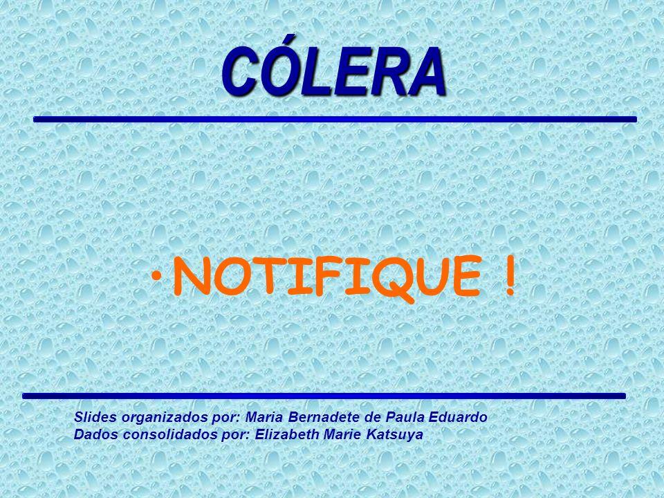 NOTIFIQUE ! CÓLERA Slides organizados por: Maria Bernadete de Paula Eduardo Dados consolidados por: Elizabeth Marie Katsuya