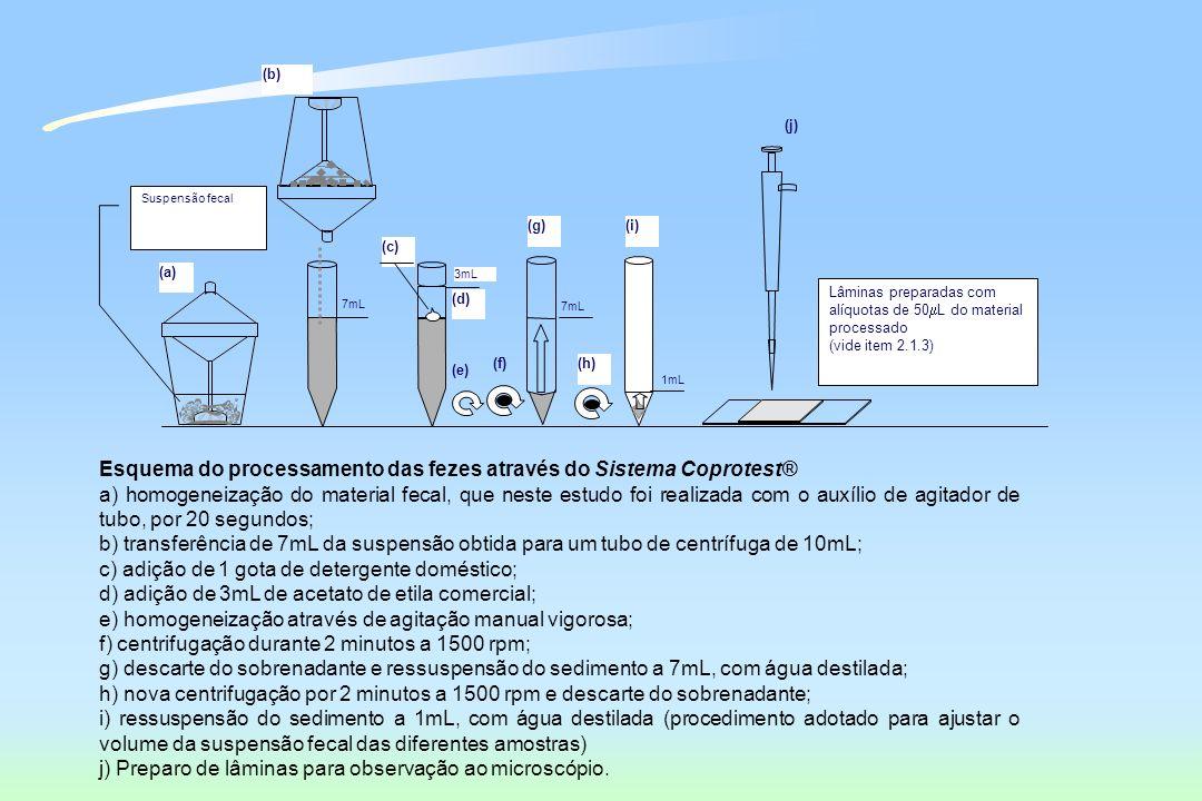 (a) (b) (g)(i) (e) (f)(h) Lâminas preparadas com alíquotas de 50 L do material processado (vide item 2.1.3) 7mL 3mL (d) (c) 1mL Suspensão fecal (j) Es