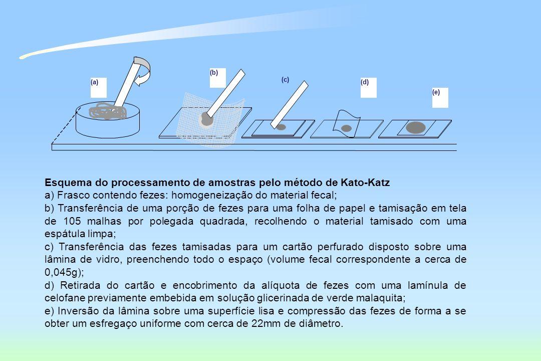 (a) (b) (c) (d) (e) Esquema do processamento de amostras pelo método de Kato-Katz a) Frasco contendo fezes: homogeneização do material fecal; b) Trans
