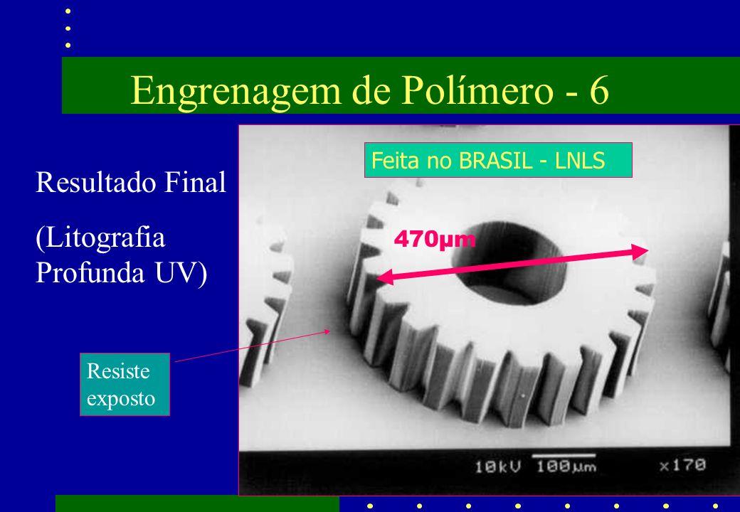 Engrenagem de Polímero - 6 Resultado Final (Litografia Profunda UV) Resiste exposto Feita no BRASIL - LNLS 470µm