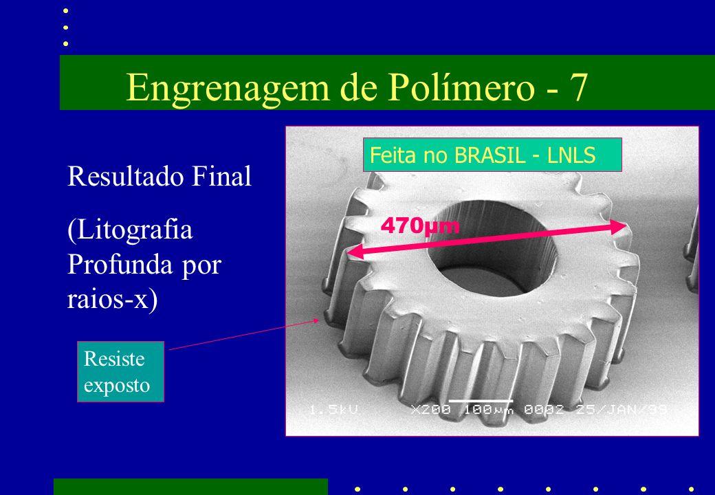 Engrenagem de Polímero - 7 Resultado Final (Litografia Profunda por raios-x) Resiste exposto Feita no BRASIL - LNLS 470µm