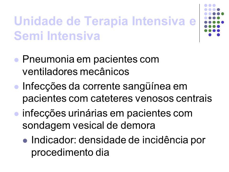 Unidade de Terapia Intensiva e Semi Intensiva Pneumonia em pacientes com ventiladores mecânicos Infecções da corrente sangüínea em pacientes com cateteres venosos centrais infecções urinárias em pacientes com sondagem vesical de demora Indicador: densidade de incidência por procedimento dia