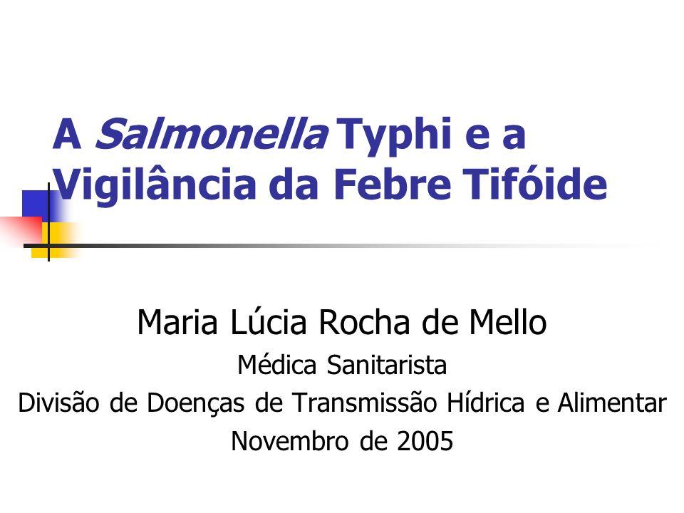 A Salmonella Typhi e a Vigilância da Febre Tifóide Maria Lúcia Rocha de Mello Médica Sanitarista Divisão de Doenças de Transmissão Hídrica e Alimentar