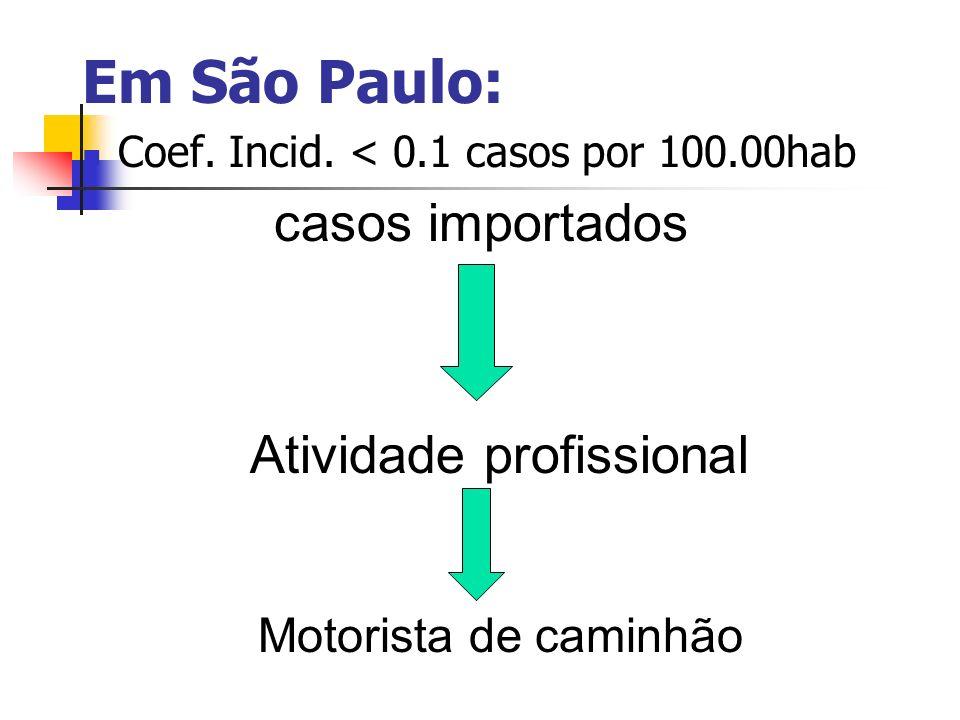 Em São Paulo: Coef. Incid. < 0.1 casos por 100.00hab casos importados Atividade profissional Motorista de caminhão