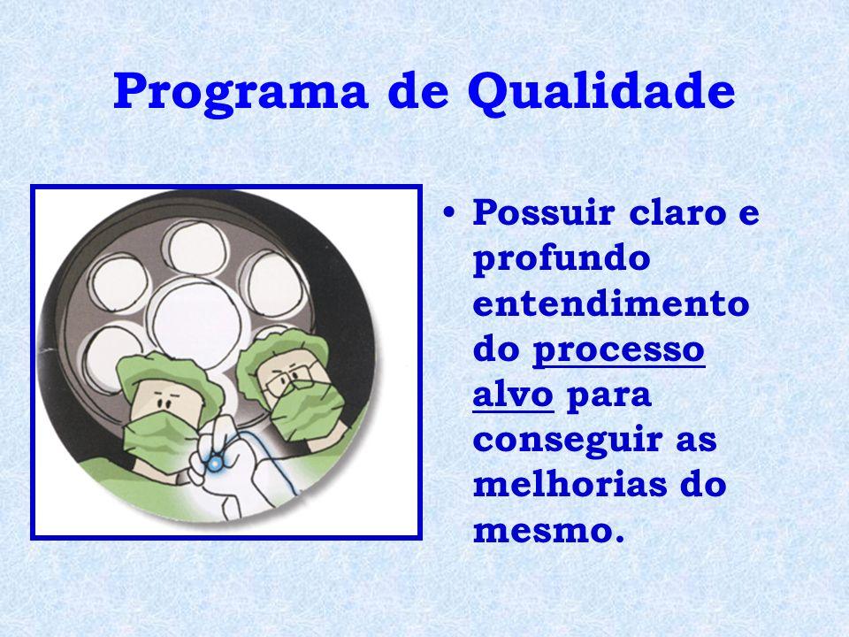 Programa de Qualidade Possuir claro e profundo entendimento do processo alvo para conseguir as melhorias do mesmo.