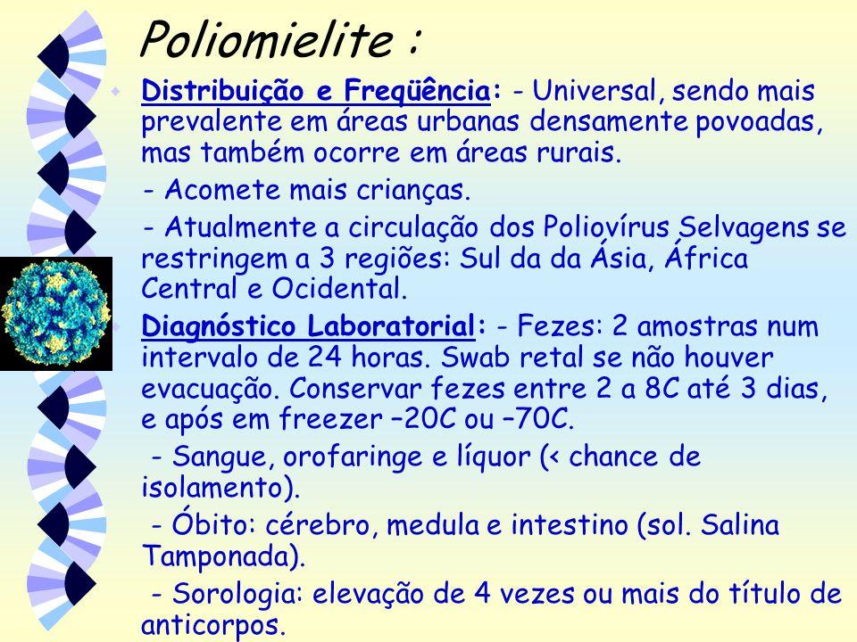 Poliomielite : w Distribuição e Freqüência: - Universal, sendo mais prevalente em áreas urbanas densamente povoadas, mas também ocorre em áreas rurais