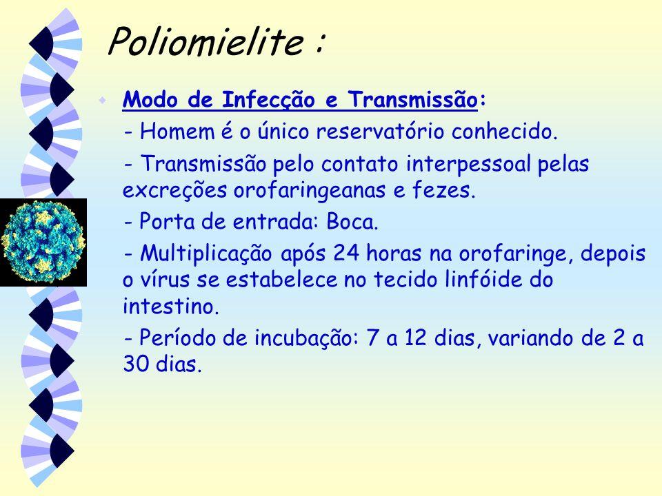 Poliomielite : w Modo de Infecção e Transmissão: - Homem é o único reservatório conhecido. - Transmissão pelo contato interpessoal pelas excreções oro