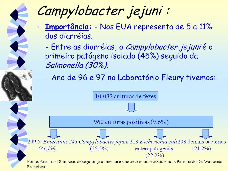 Campylobacter jejuni : w Importância: - Nos EUA representa de 5 a 11% das diarréias. - Entre as diarréias, o Campylobacter jejuni é o primeiro patógen