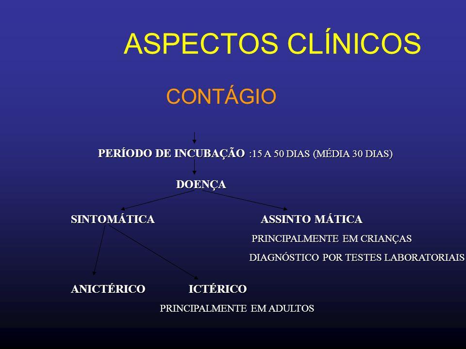 ASPECTOS CLÍNICOS CONTÁGIO PERÍODO DE INCUBAÇÃO :15 A 50 DIAS (MÉDIA 30 DIAS) DOENÇA SINTOMÁTICA ASSINTO MÁTICA PRINCIPALMENTE EM CRIANÇAS DIAGNÓSTICO POR TESTES LABORATORIAIS ANICTÉRICO ICTÉRICO ICTÉRICO PRINCIPALMENTE EM ADULTOS
