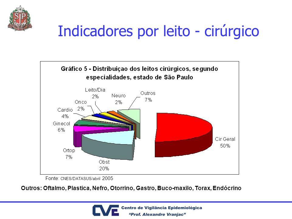Indicadores por leito - cirúrgico Fonte: CNES/DATASUS/abril 2005 Outros: Oftalmo, Plastica, Nefro, Otorrino, Gastro, Buco-maxilo, Torax, Endócrino