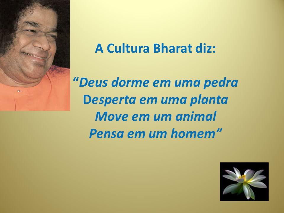 A Cultura Bharat diz:Deus dorme em uma pedra Desperta em uma planta Move em um animal Pensa em um homem