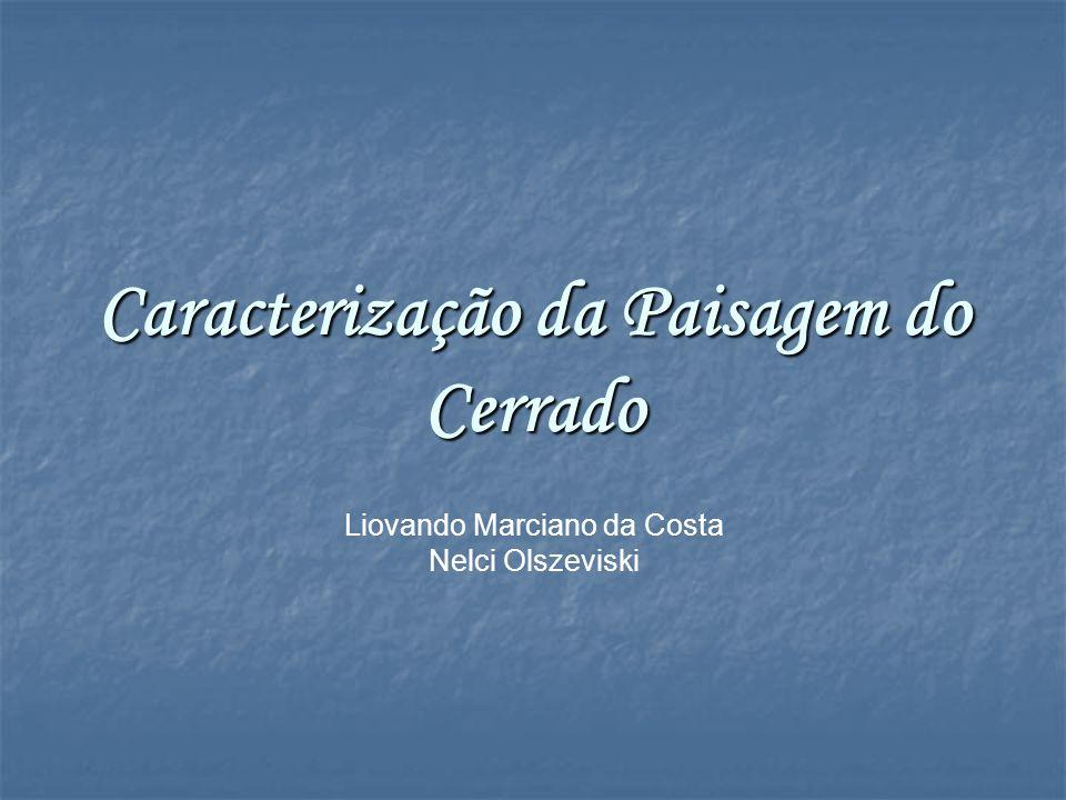 Caracterização da Paisagem do Cerrado Liovando Marciano da Costa Nelci Olszeviski