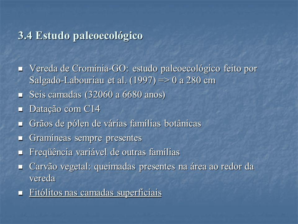 3.4 Estudo paleoecológico Vereda de Cromínia-GO: estudo paleoecológico feito por Salgado-Labouriau et al. (1997) => 0 a 280 cm Vereda de Cromínia-GO: