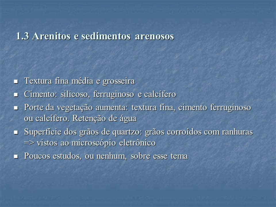 1.3 Arenitos e sedimentos arenosos Textura fina média e grosseira Textura fina média e grosseira Cimento: silicoso, ferruginoso e calcífero Cimento: s