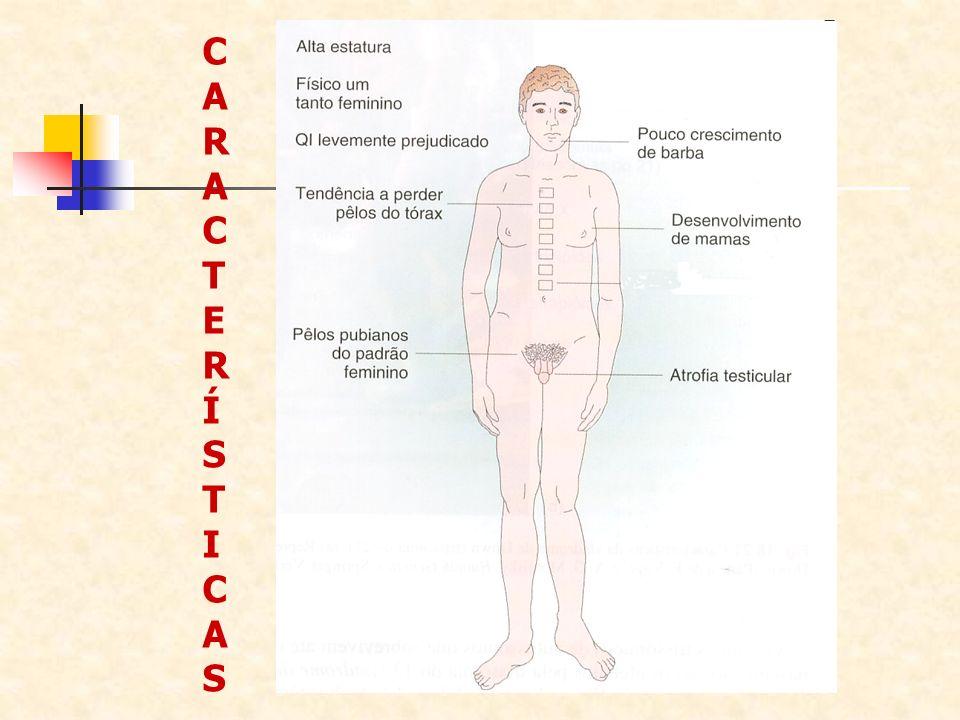 CARACTERÍSTICASCARACTERÍSTICAS