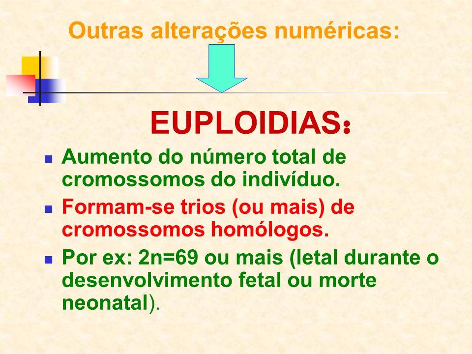 Outras alterações numéricas: EUPLOIDIAS : Aumento do número total de cromossomos do indivíduo. Formam-se trios (ou mais) de cromossomos homólogos. Por