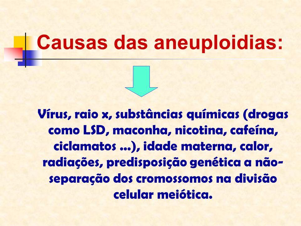 Causas das aneuploidias: Vírus, raio x, substâncias químicas (drogas como LSD, maconha, nicotina, cafeína, ciclamatos...), idade materna, calor, radia
