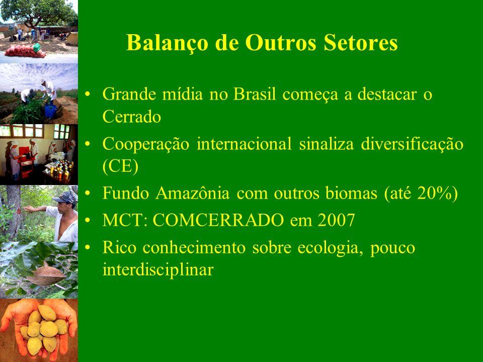 Balanço de Outros Setores Grande mídia no Brasil começa a destacar o Cerrado Cooperação internacional sinaliza diversificação (CE) Fundo Amazônia com
