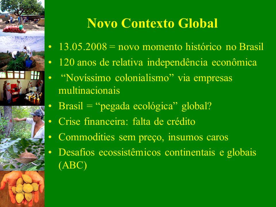 Novo Contexto Global 13.05.2008 = novo momento histórico no Brasil 120 anos de relativa independência econômica Novíssimo colonialismo via empresas mu