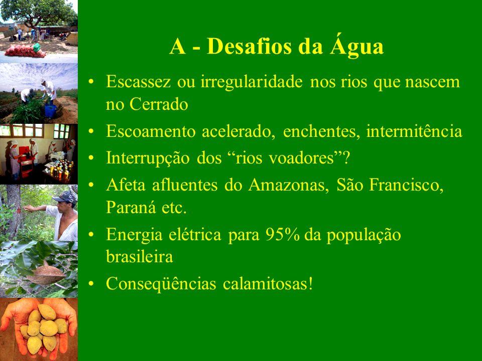 A - Desafios da Água Escassez ou irregularidade nos rios que nascem no Cerrado Escoamento acelerado, enchentes, intermitência Interrupção dos rios voa