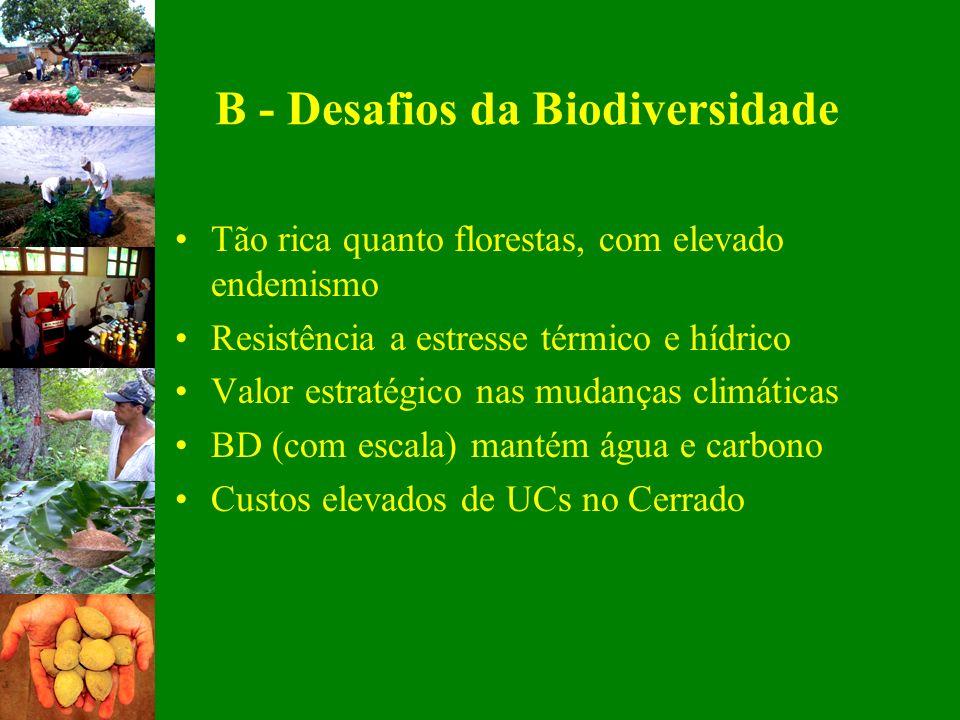 B - Desafios da Biodiversidade Tão rica quanto florestas, com elevado endemismo Resistência a estresse térmico e hídrico Valor estratégico nas mudança