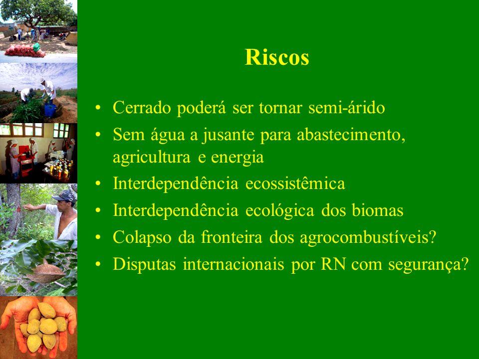 Riscos Cerrado poderá ser tornar semi-árido Sem água a jusante para abastecimento, agricultura e energia Interdependência ecossistêmica Interdependênc