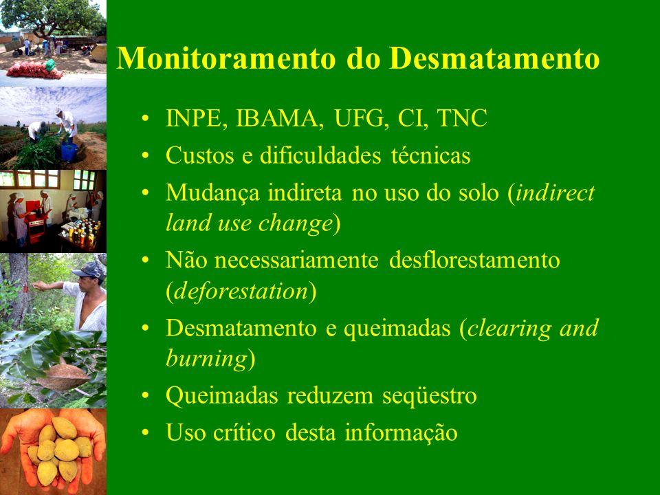 Monitoramento do Desmatamento INPE, IBAMA, UFG, CI, TNC Custos e dificuldades técnicas Mudança indireta no uso do solo (indirect land use change) Não