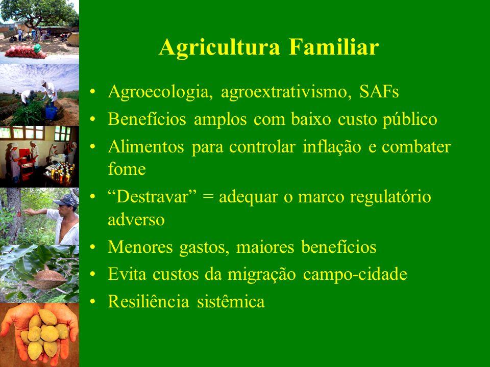 Agricultura Familiar Agroecologia, agroextrativismo, SAFs Benefícios amplos com baixo custo público Alimentos para controlar inflação e combater fome