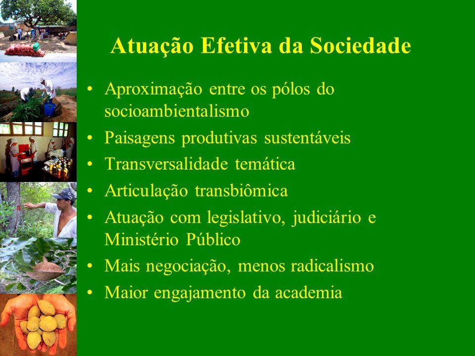 Atuação Efetiva da Sociedade Aproximação entre os pólos do socioambientalismo Paisagens produtivas sustentáveis Transversalidade temática Articulação