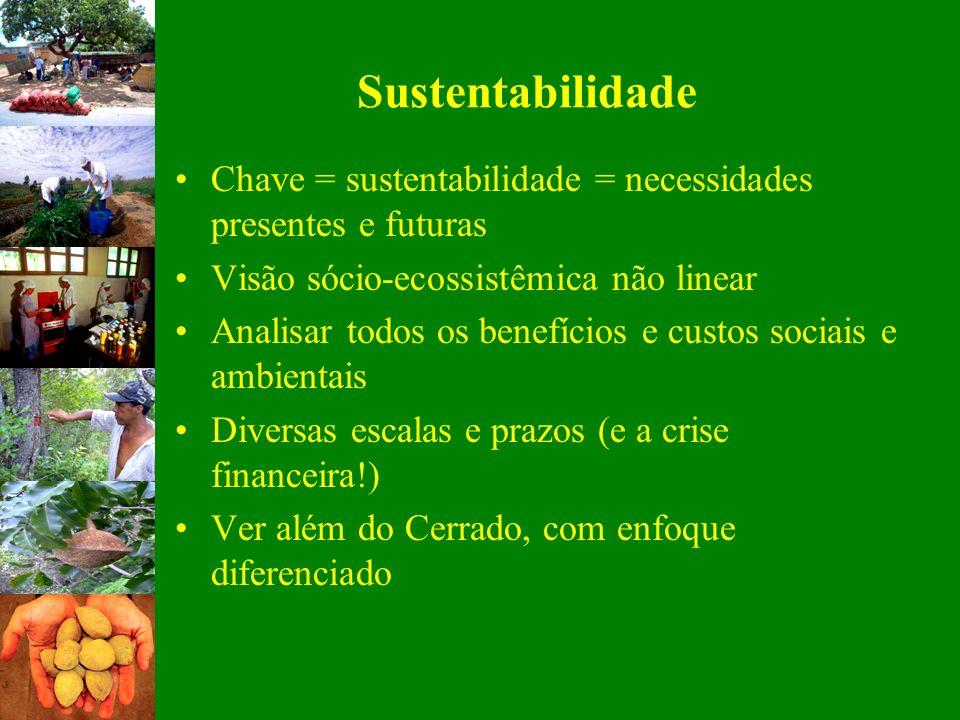 Sustentabilidade Chave = sustentabilidade = necessidades presentes e futuras Visão sócio-ecossistêmica não linear Analisar todos os benefícios e custo