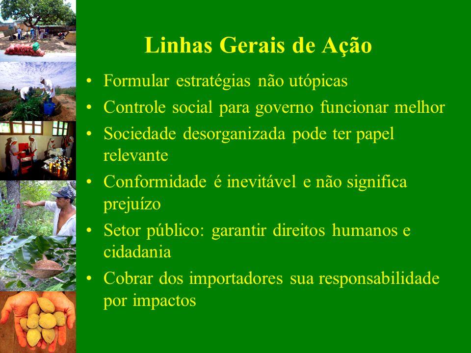 Linhas Gerais de Ação Formular estratégias não utópicas Controle social para governo funcionar melhor Sociedade desorganizada pode ter papel relevante