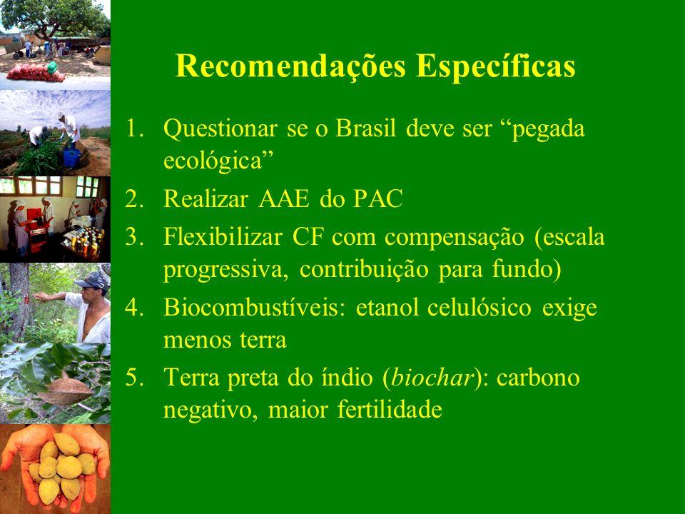 Recomendações Específicas 1.Questionar se o Brasil deve ser pegada ecológica 2.Realizar AAE do PAC 3.Flexibilizar CF com compensação (escala progressi