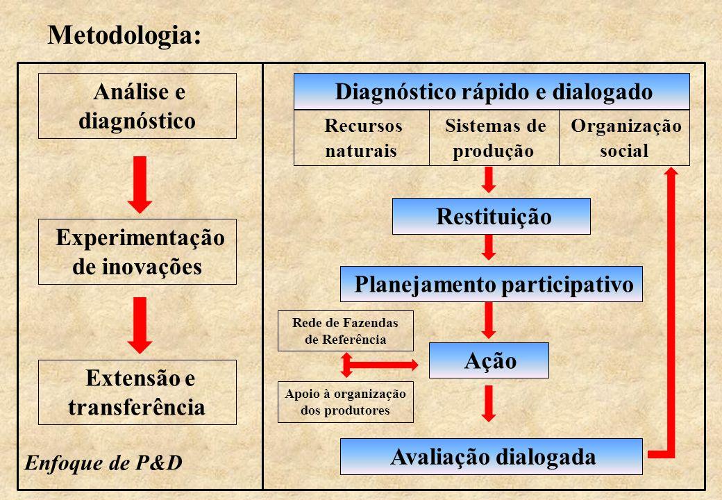 Metodologia: Análise e diagnóstico Experimentação de inovações Extensão e transferência Enfoque de P&D Diagnóstico rápido e dialogado Recursos naturai