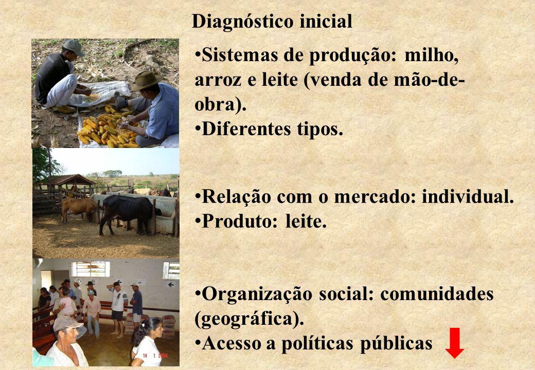Diagnóstico inicial Sistemas de produção: milho, arroz e leite (venda de mão-de- obra). Diferentes tipos. Relação com o mercado: individual. Produto: